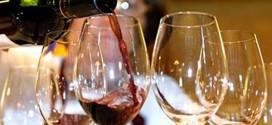 Predstavljanje rezultata vinskih projekata