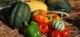 Novi model izravnih plaćanja u poljoprivredi