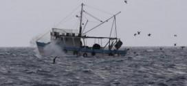 Scraping: Obustava ribolova kao projekt EU-a koji je stigao i do hrvatskih ribara