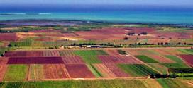 Zakon o obiteljskom poljoprivrednom gospodarstvu