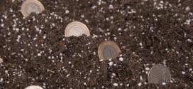 Sutra započinje isplata 1,4 milijarde kuna izravne potpore poljoprivrednicima