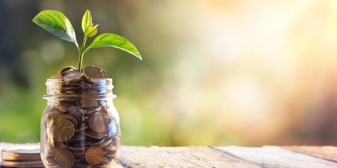 Od 1. rujna kreću najpovoljniji krediti za poljoprivrednike – raspisan Program mikro i malih zajmova