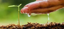 Poljoprivrednici potpisali prvih 309 ugovora za razvoj gospodarstava – svakom potpora od 15.000 eura – novac osiguran za više od 3.000 poljoprivrednika