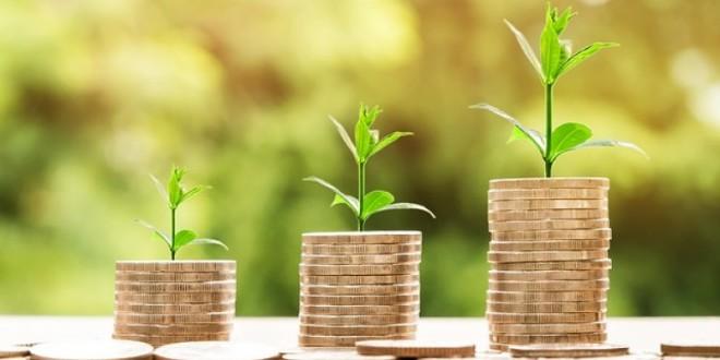 Ministarstvo poljoprivrede povećalo sredstava za financiranje projekata – 360 milijuna kuna više za poljoprivredu i šumarstvo
