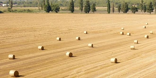 """E-savjetovanje Nacrta natječaja za provedbu tipa operacije 5.2.1. """"Obnova poljoprivrednog zemljišta i proizvodnog potencijala"""""""